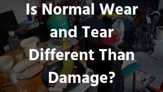Wear-Tear-Damage-Schambs